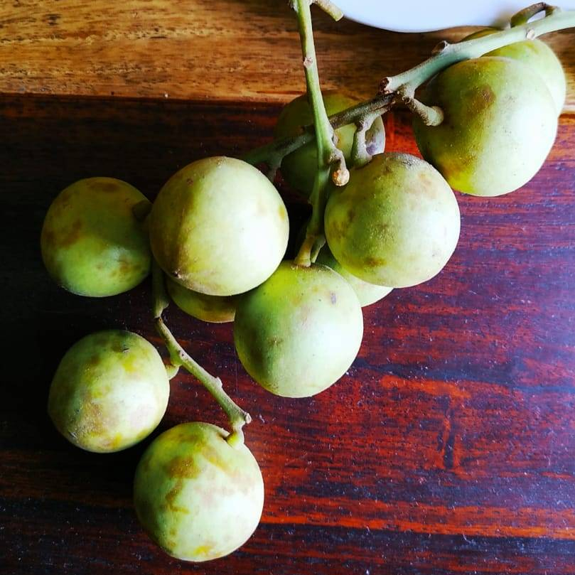leteku-or-burmese-grapes